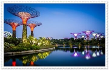 singapur-gardens-by-the-bay-sady-zaliv-kusty-derevia-ogni-di
